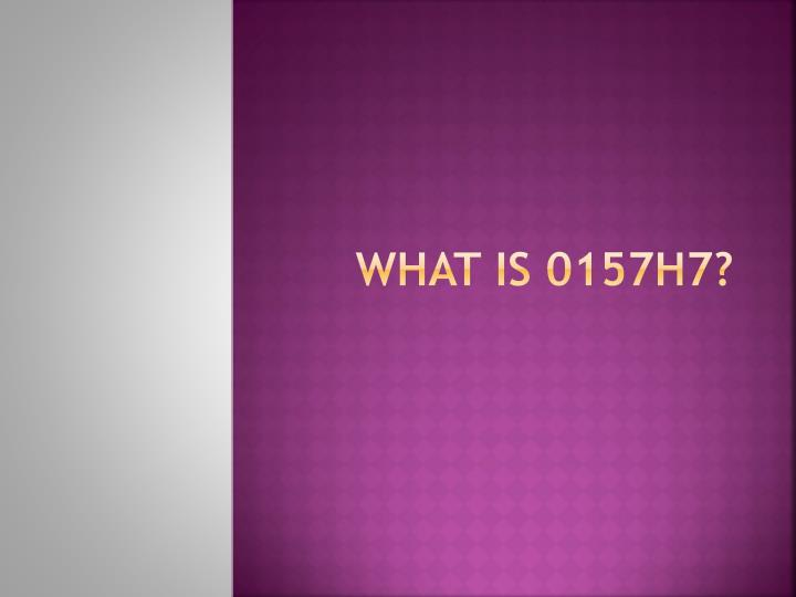 What is 0157H7?