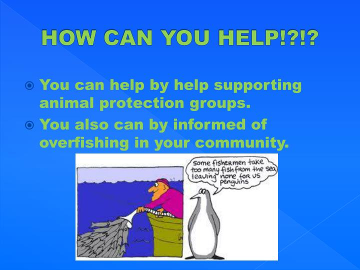 HOW CAN YOU HELP!?!?