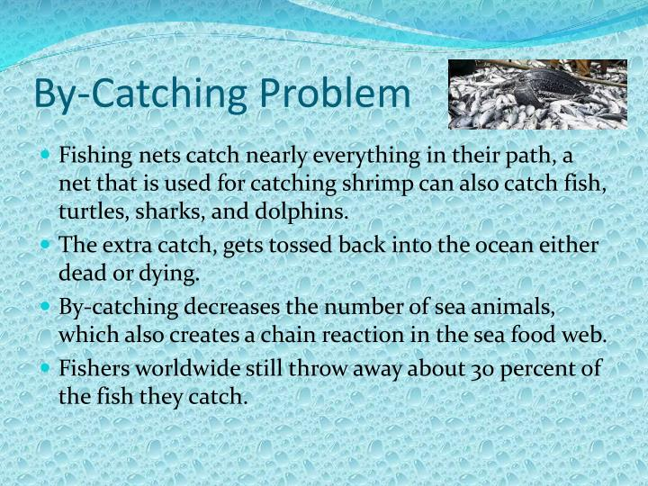 By-Catching Problem