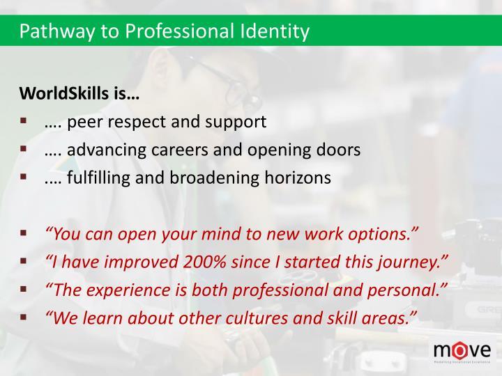 Pathway to Professional Identity