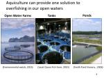 aquiculture can p rovide o ne solution to overfishing in our open waters