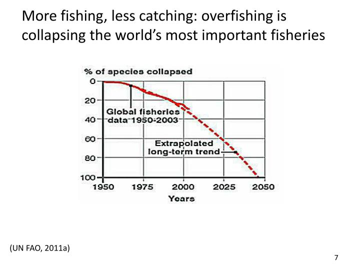 More fishing, less catching: