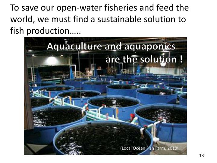 To save our open-water fisheries and feed the world, we must