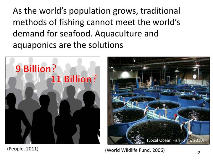 As the world's population grows, traditional methods of fishing cannot meet the world's demand for seafood. Aquaculture and