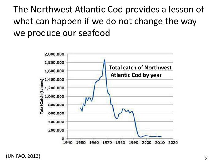 The Northwest Atlantic Cod provides a lesson of what can happen if we do not change the way we produce our seafood