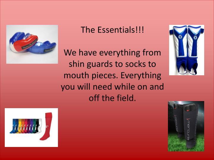 The Essentials!!!