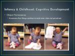 infancy childhood cognitive development1