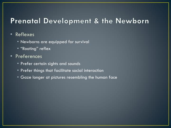 Prenatal Development & the Newborn
