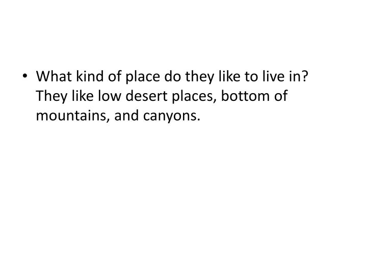 What kind of place do they like to live in?