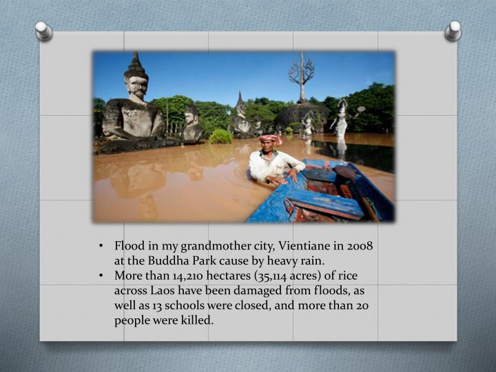 Flood in my grandmother city, Vientiane in 2008 at the Buddha Park cause by heavy rain.