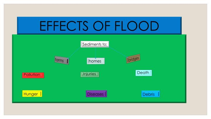 EFFECTS OF FLOOD