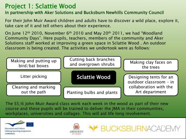 Project 1: Sclattie Wood