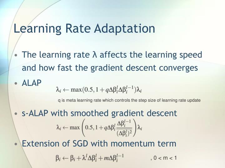 Learning Rate Adaptation