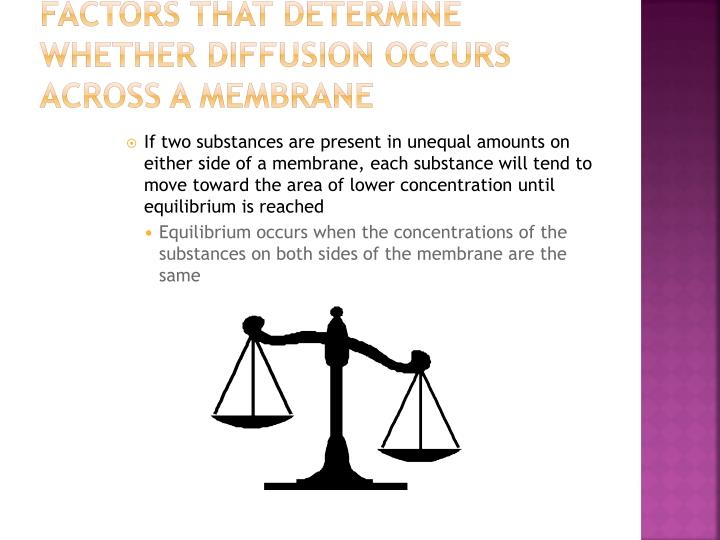 Factors that determine whether diffusion occurs across a membrane