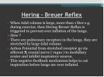 hering breuer reflex