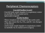 peripheral chemoreceptors
