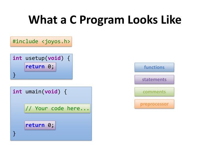 What a C Program Looks Like