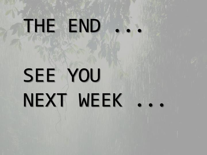 THE END ...