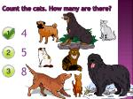 count the cats how many are there