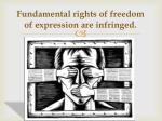 fundamental rights of freedom of expression are infringed