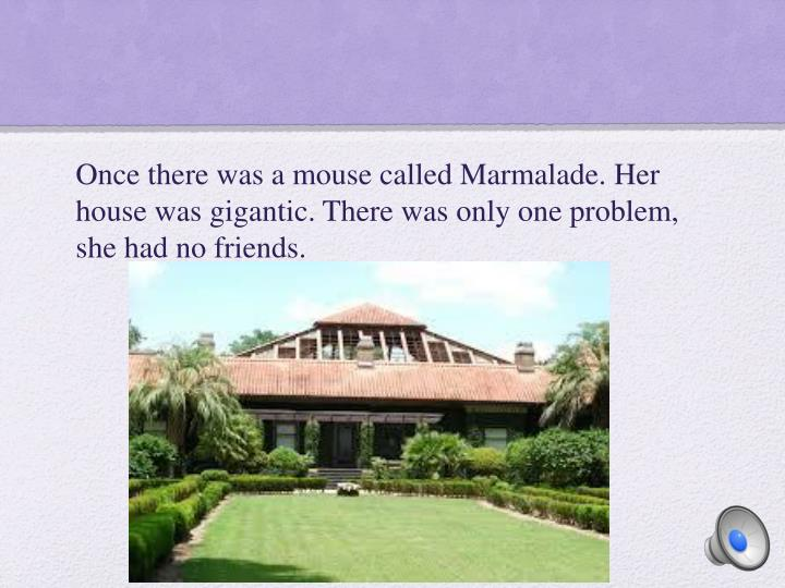 Once there was a mouse called Marmalade. Her house was gigantic. There was only one problem, she had no friends.