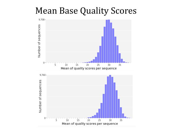 Mean Base Quality Scores