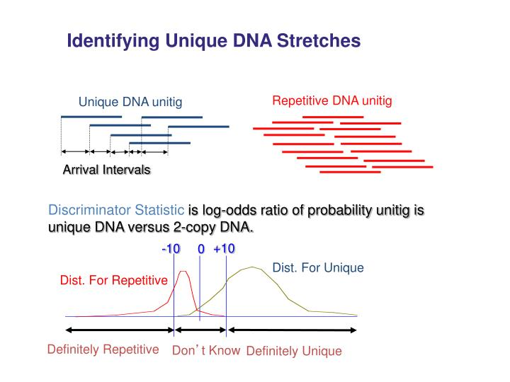Identifying Unique DNA Stretches