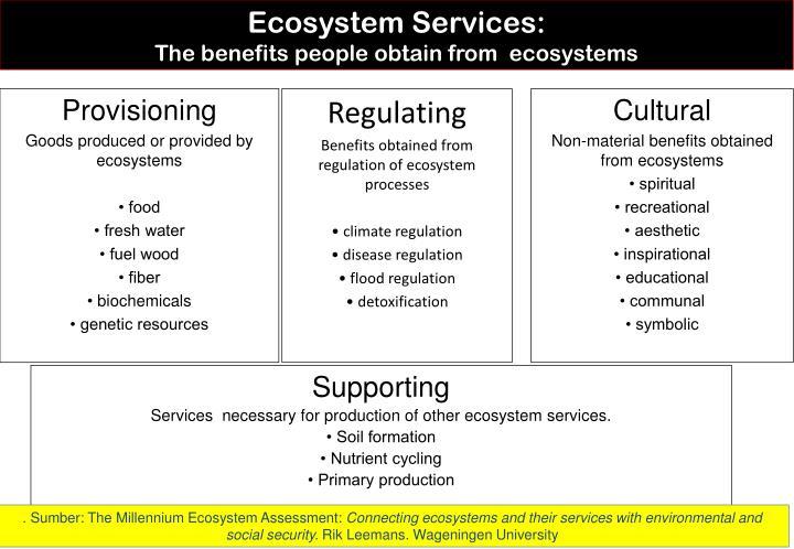 Ecosystem Services: