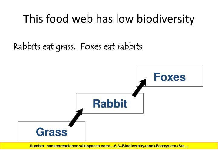 This food web has low biodiversity