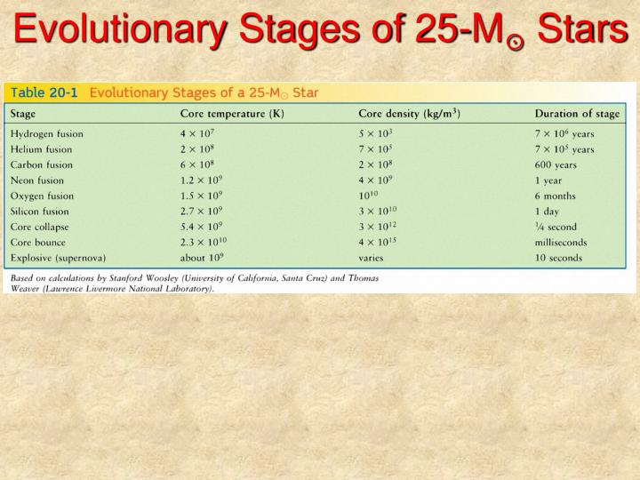 Evolutionary Stages of