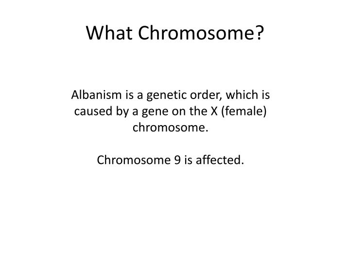 What Chromosome?