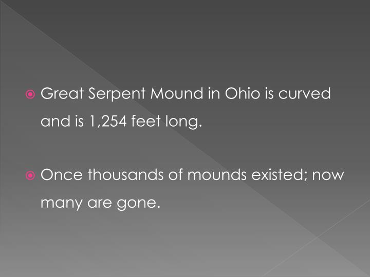 Great Serpent Mound in Ohio is curved and is 1,254 feet long.