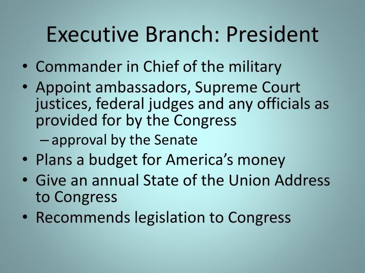 Executive Branch: President