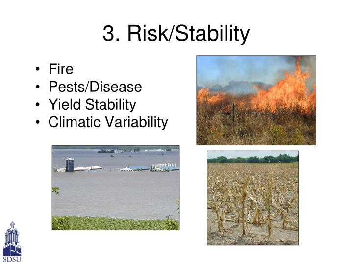 3. Risk/Stability