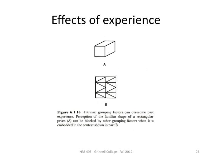 Effects of experience