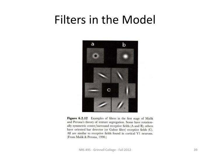 Filters in the Model