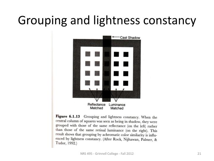 Grouping and lightness constancy