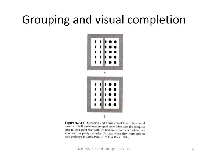 Grouping and visual completion
