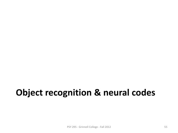 Object recognition & neural codes