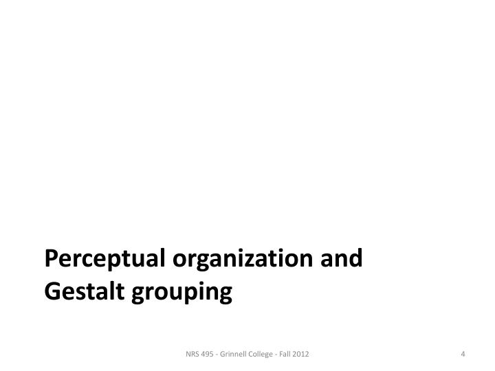 Perceptual organization and  Gestalt grouping