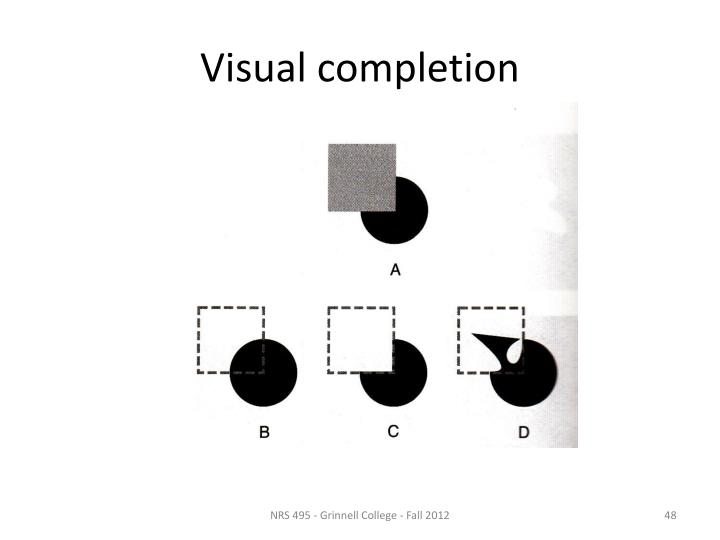 Visual completion
