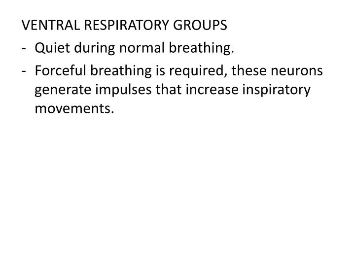 VENTRAL RESPIRATORY GROUPS