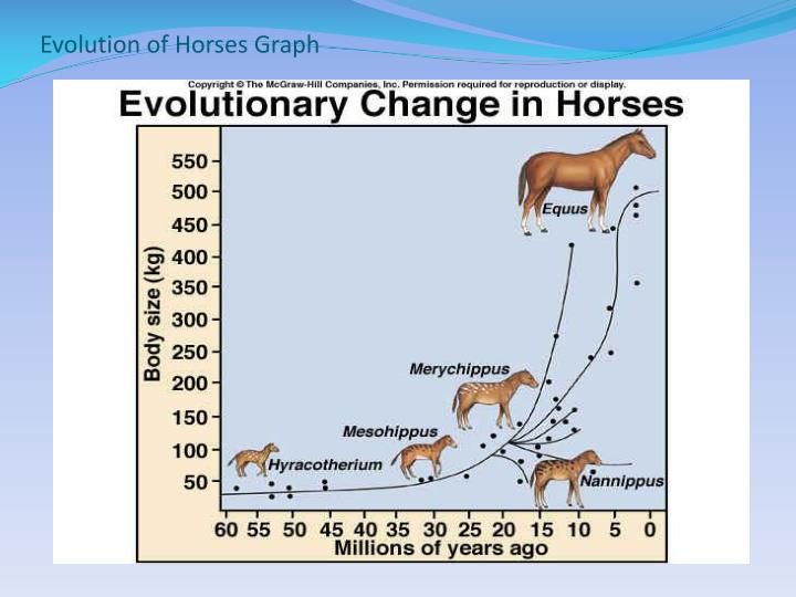 Evolution of Horses Graph