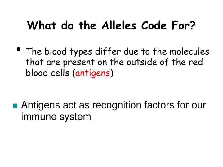 What do the Alleles Code For?
