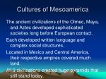 cultures of mesoamerica