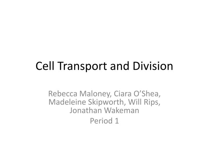 Cell transport and division