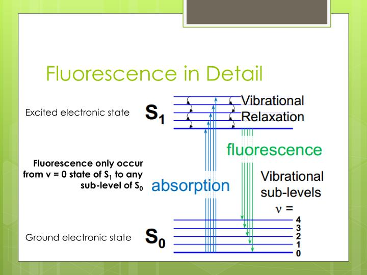 Fluorescence in Detail