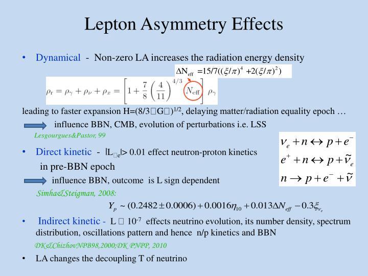 Lepton Asymmetry Effects