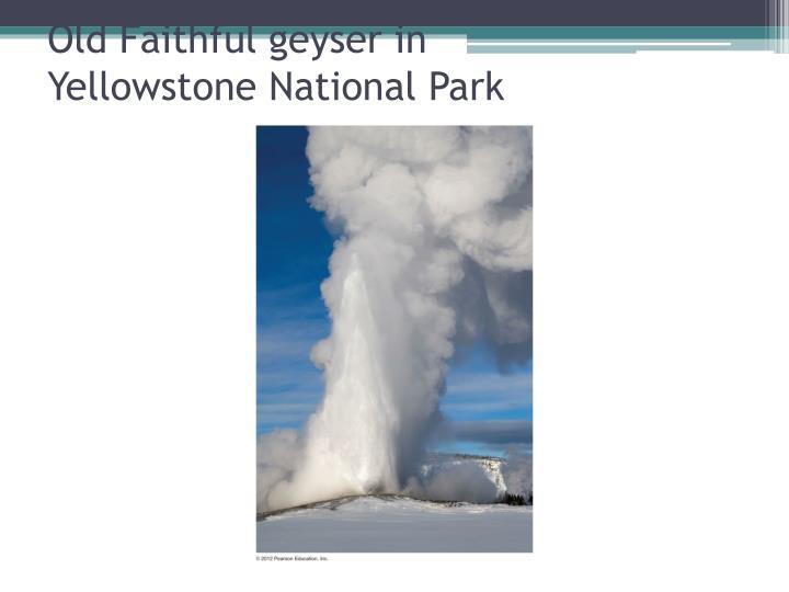 Old Faithful geyser in