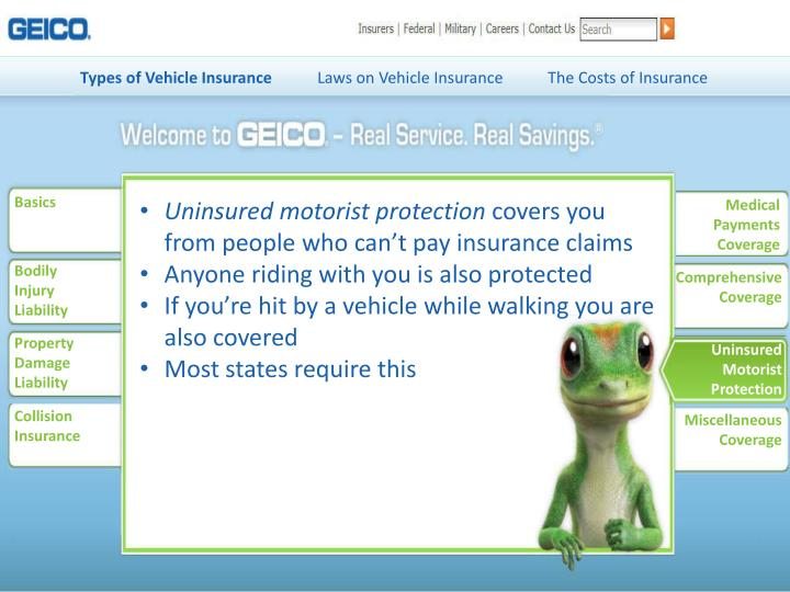 Types of Vehicle Insurance